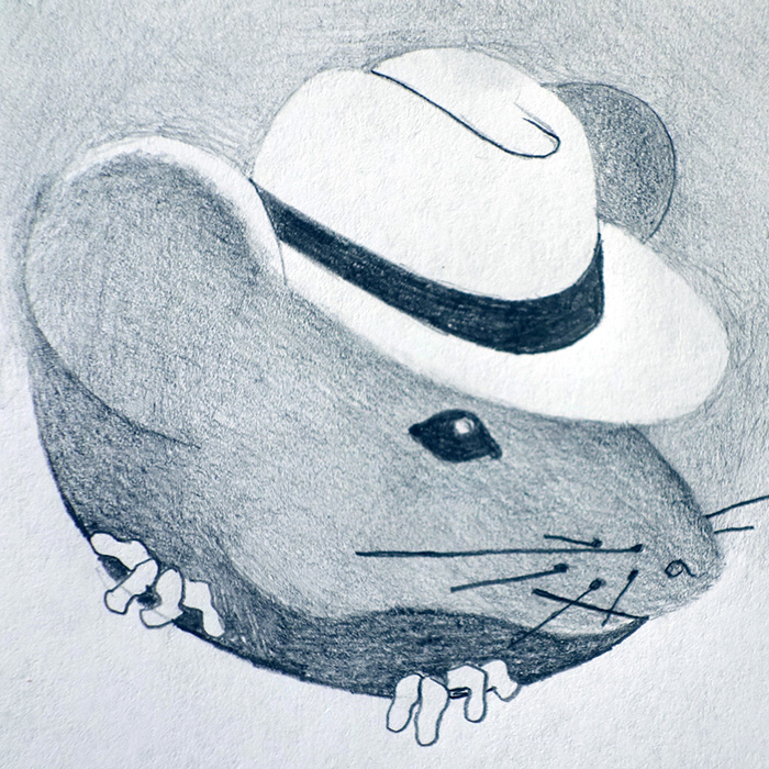 Town and Country Mouse Design